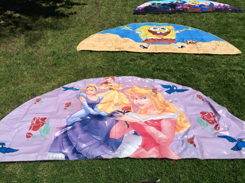 Disney Princesses Banner