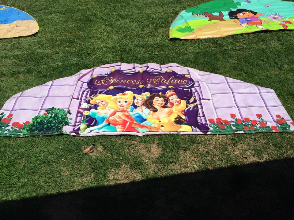 Princess Palace Banner